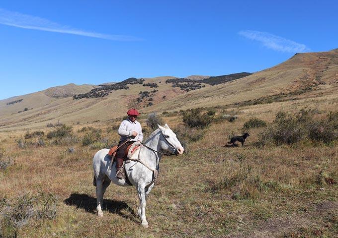 רכיבת סוסים בחווה ארגנטינאית עם גאוצ'ו