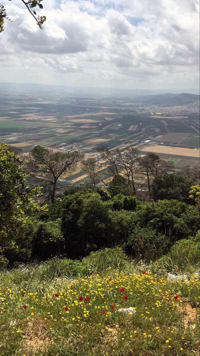 שמורת הר תבור