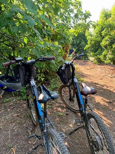 חופשה משפחתית בגליל העליון - אופניים בקיבוץ דפנה