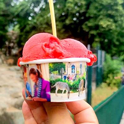 גלידה כשרה בשנברון