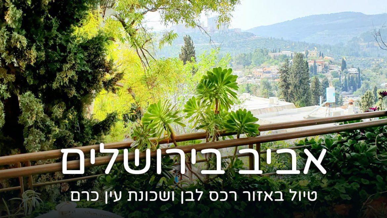 אביב בירושלים – יום טיול באזור רכס לבן ועין כרם