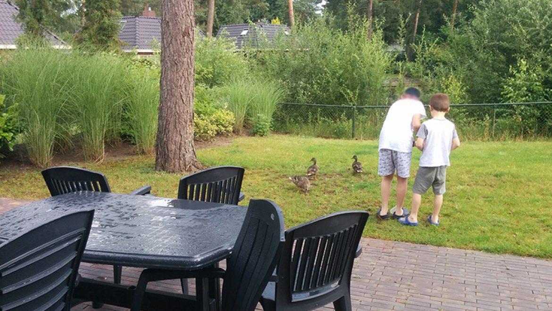 איך לטייל בהולנד עם ילדים וגם ליהנות – חלק א'